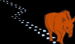 so-tapiro-pegadas