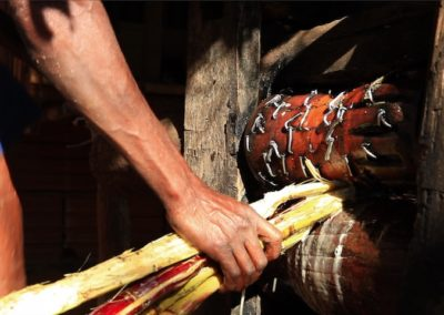 Rapadura – Saberes Tradicionais de Milho Verde